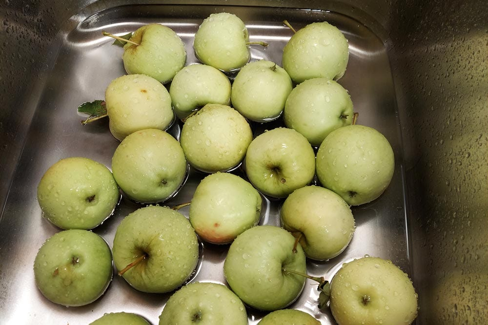 Apples washed in sink