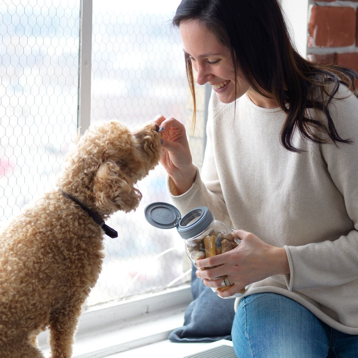 Mason Jar DIY Pet Care Kits