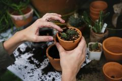 5 Gifts for Gardeners