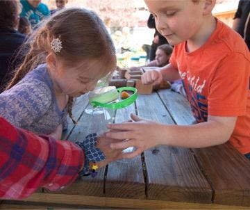 Learn about butterflies with the EXPLORE Bug Catcher