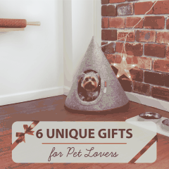 Top 6 Unique Gift Ideas for Pet Lovers (2018)
