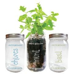 Mason Jar Herb Garden Engraved Jar