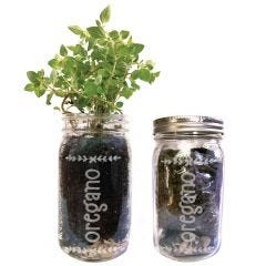 Oregano Mason Jar Herb Garden Kit