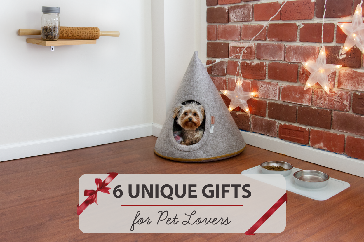 Top 6 Unique Gift Ideas for Pet Lovers (2018) story.