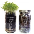 Parsley Mason Jar Herb Garden Kit